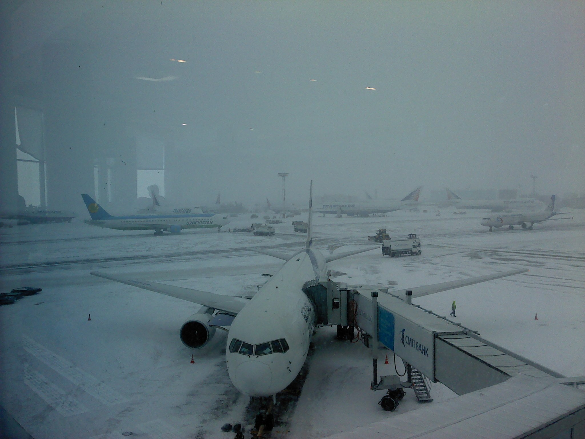 View from the Gate in Domodevodo Airport, Moscow, Russia