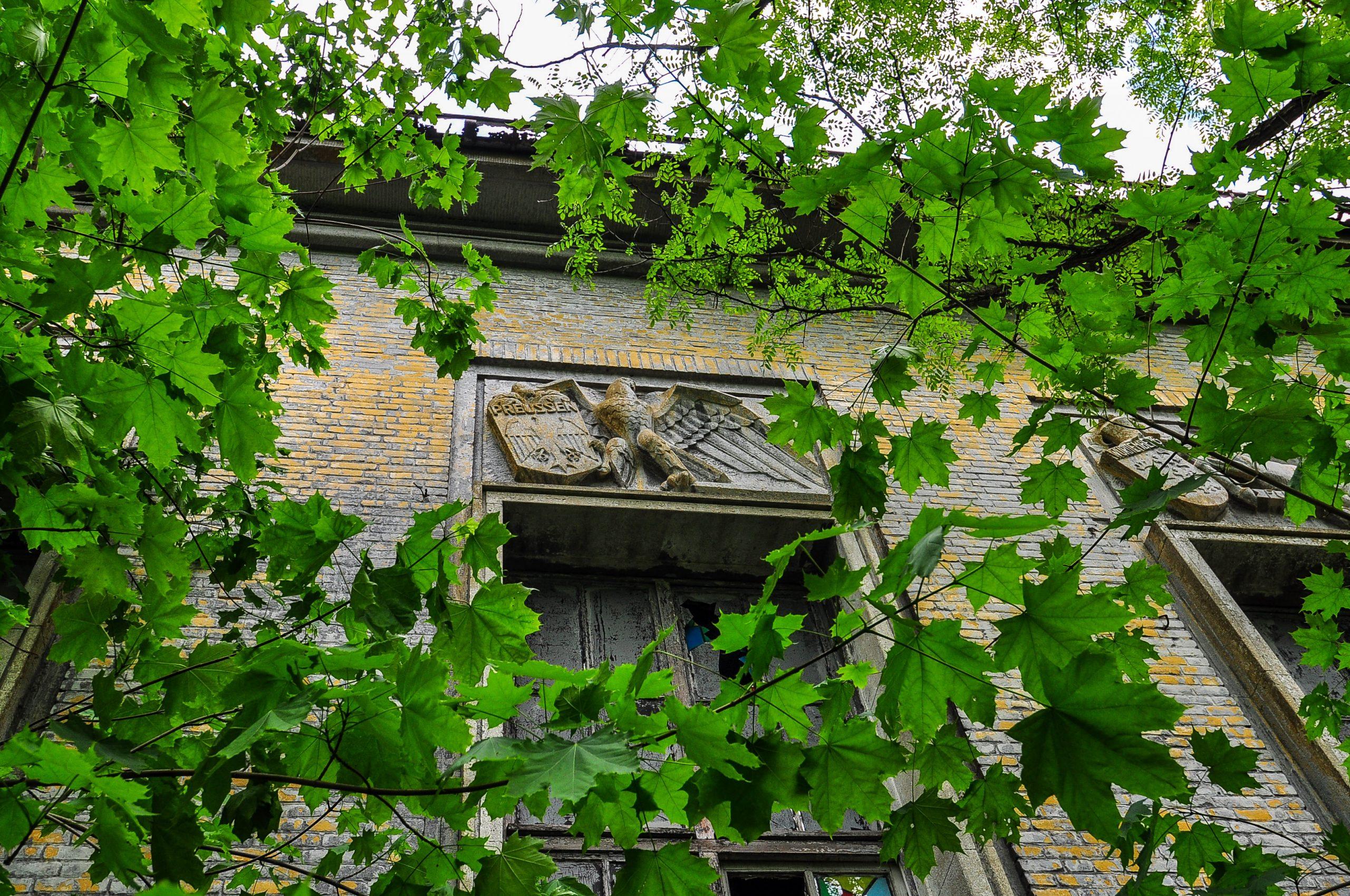 nazi eagle prussia state emblem kaserne krampnitz abandoned potsdam berlin Kavallerieschule barracks Panzertruppenschule nazi soviet military base germany deutschland