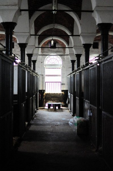 animal clinic horse stable