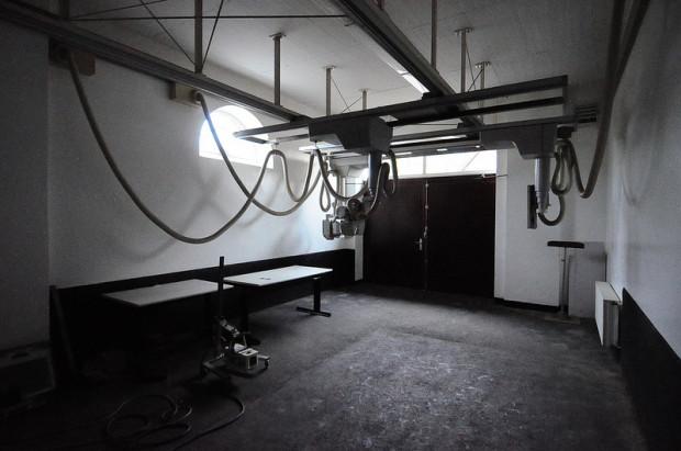 Horse X-Ray Machine