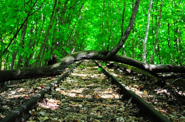 abandoned sbahn tracks