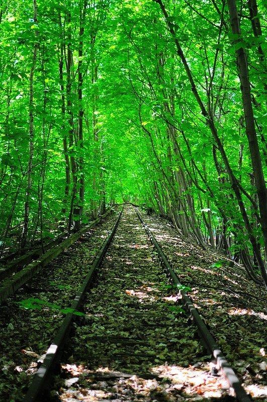 siemensbahn sbahn tracks