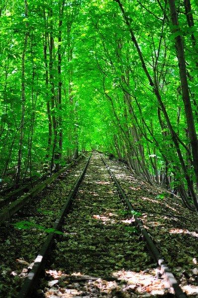 siemensbahn-sbahn-tracks