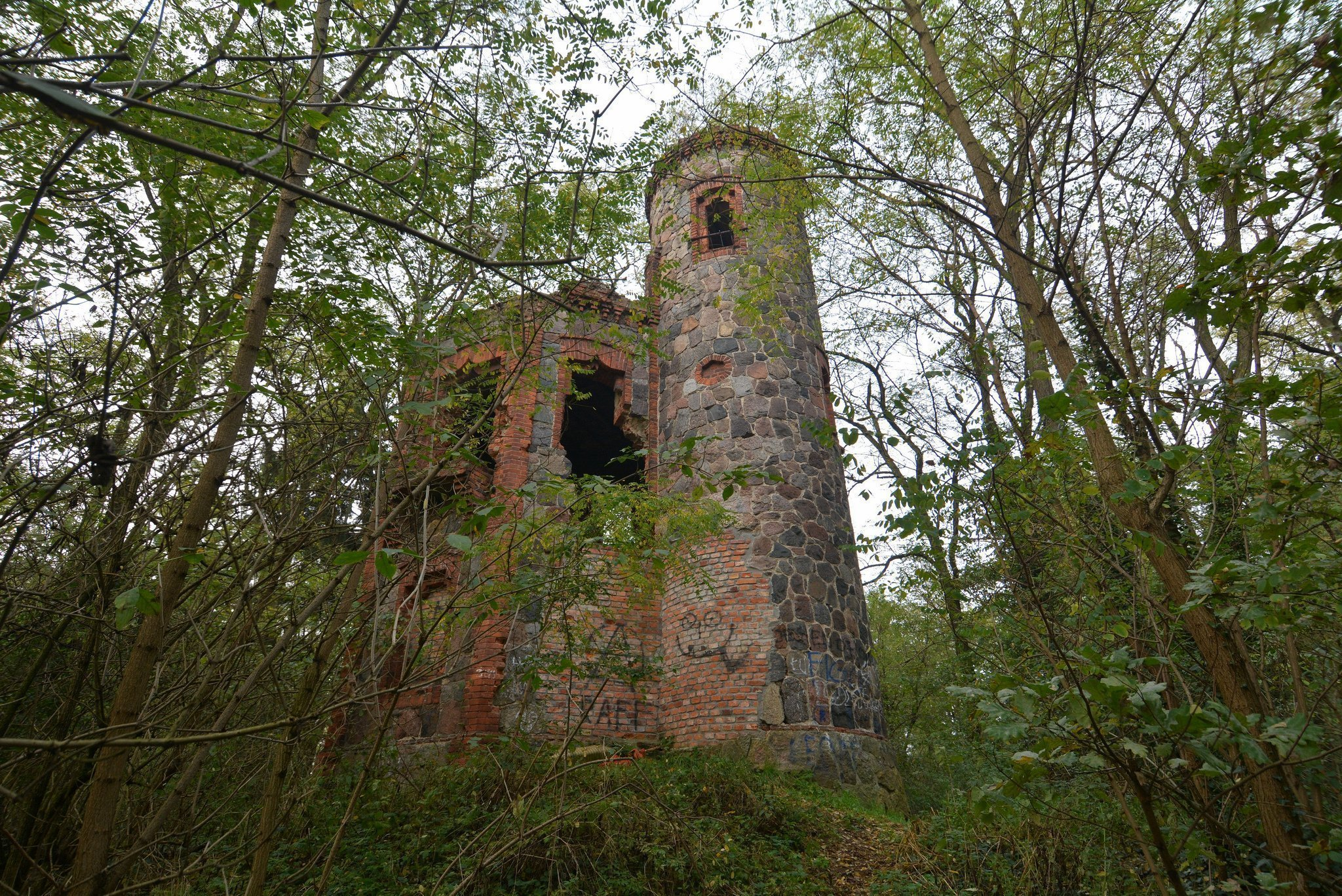 abandoned castle europe hidden forest