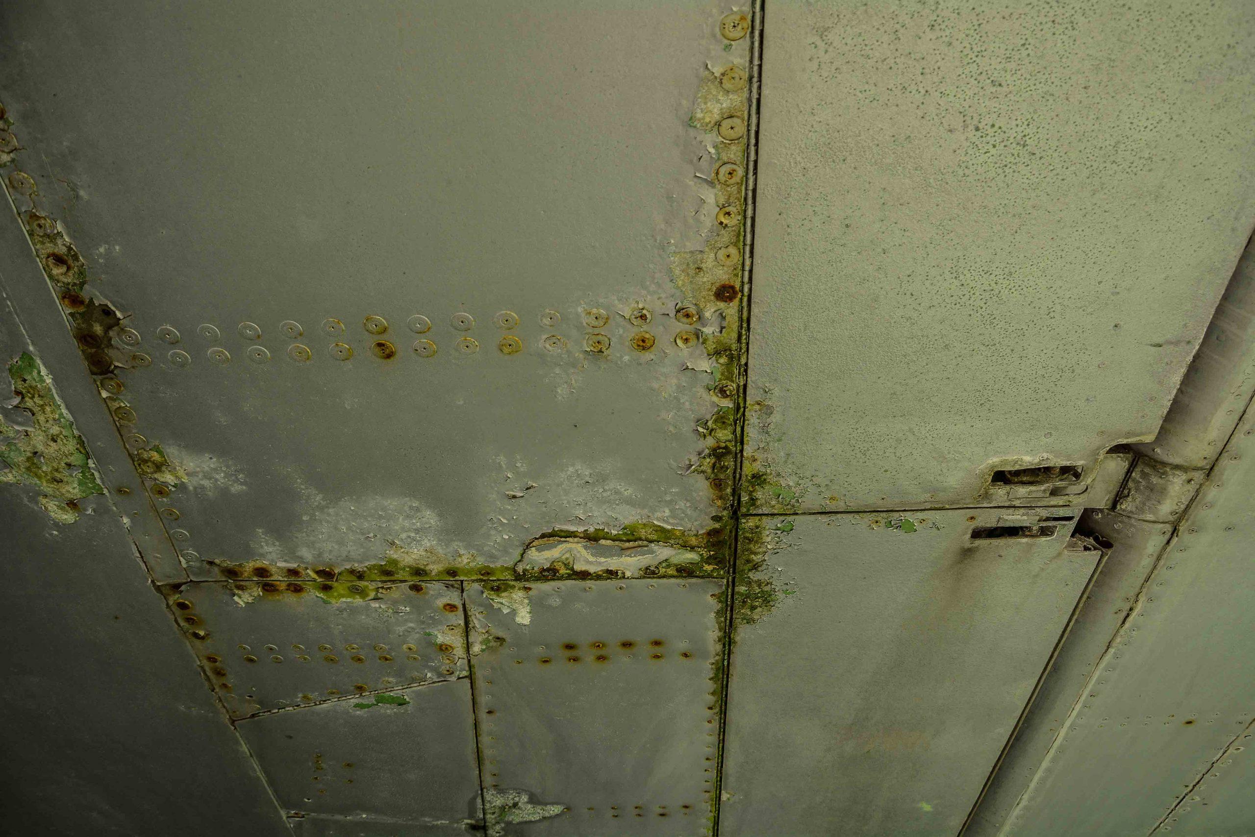 mold wing abandoned boeing 707 tegel txl flughafen airport berlin germany deutschland