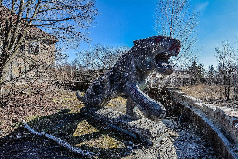 lion statue loewen statue nazi soviet military base abandoned urbex urban exploring loewen adler kaserne elstal wustermark roter stern kaserne germany lost places