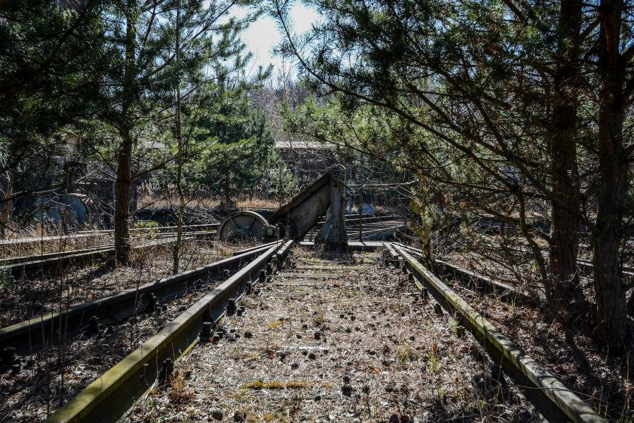 trees train tracks rangierbahnhof wustermark train yard elstal berlin lost places abandoned urbex brandenburg