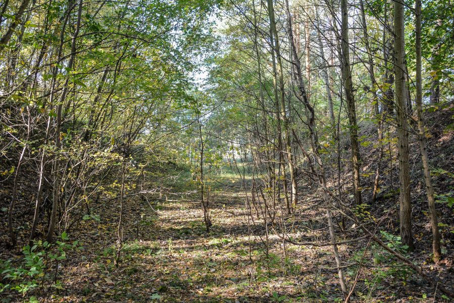 ss schiesstand sachsenhausen oraninenburg brandenburg lost places urbex abandoned germany earth walls