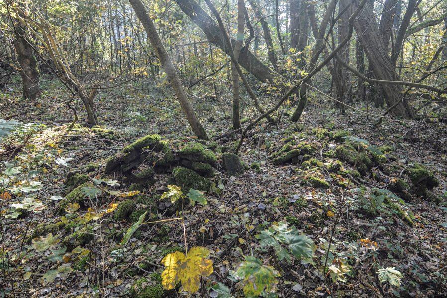 ss schiesstand sachsenhausen oraninenburg brandenburg lost places urbex abandoned germany rubbel debris ruins