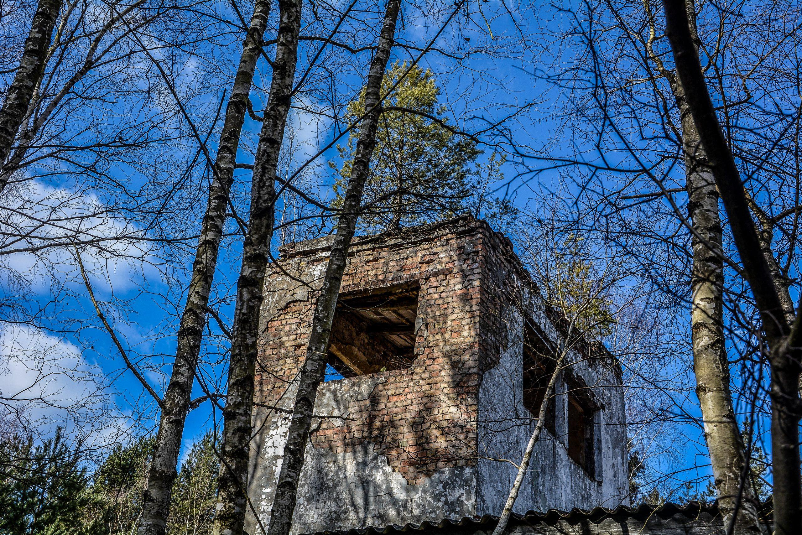observation post tower tree forst zinna adolf hitler lager luckenwalde juterbog sowjet kaserne soviet military barracks germany lost places urbex abandoned
