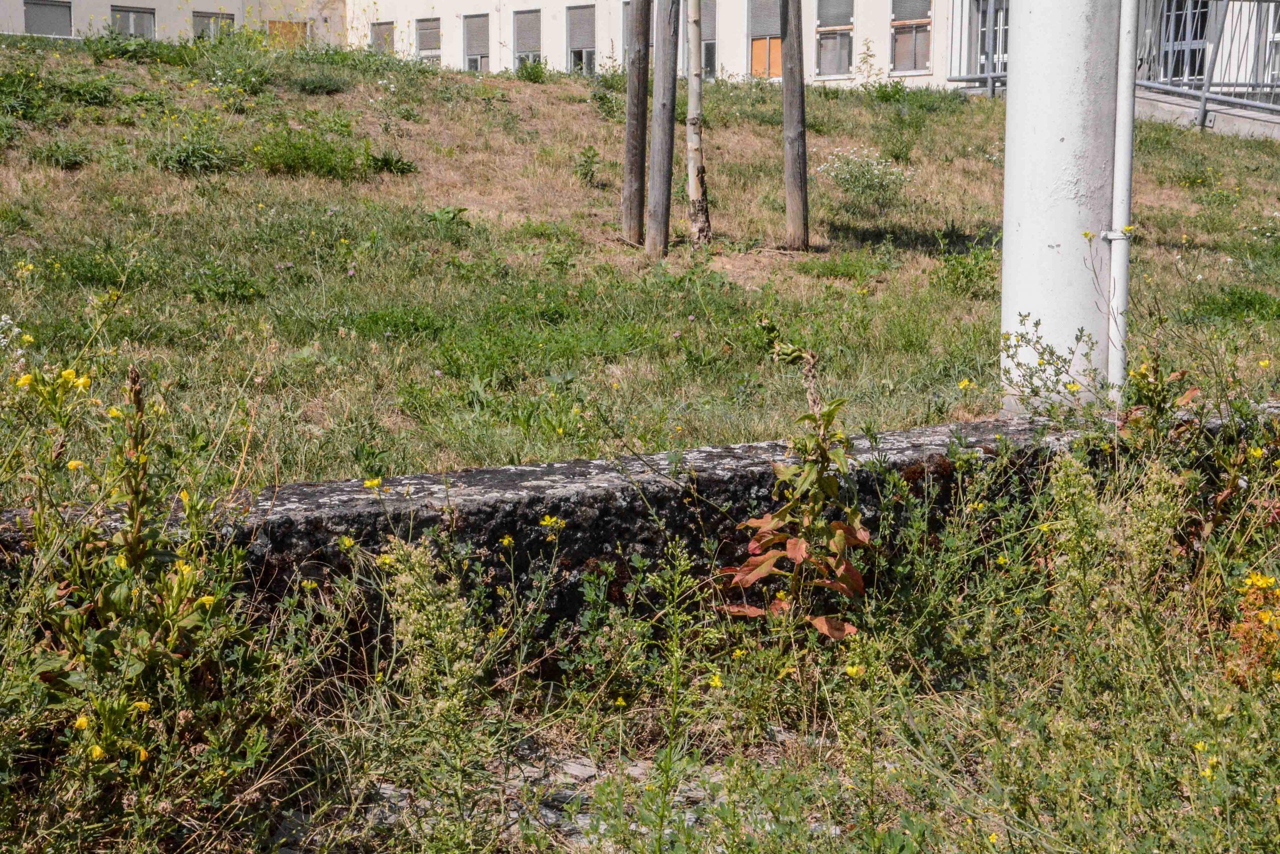 bordsteinkante curbside speer vierter ring four ring platz des 4 juli berlin hitler autobahn zehlendorf