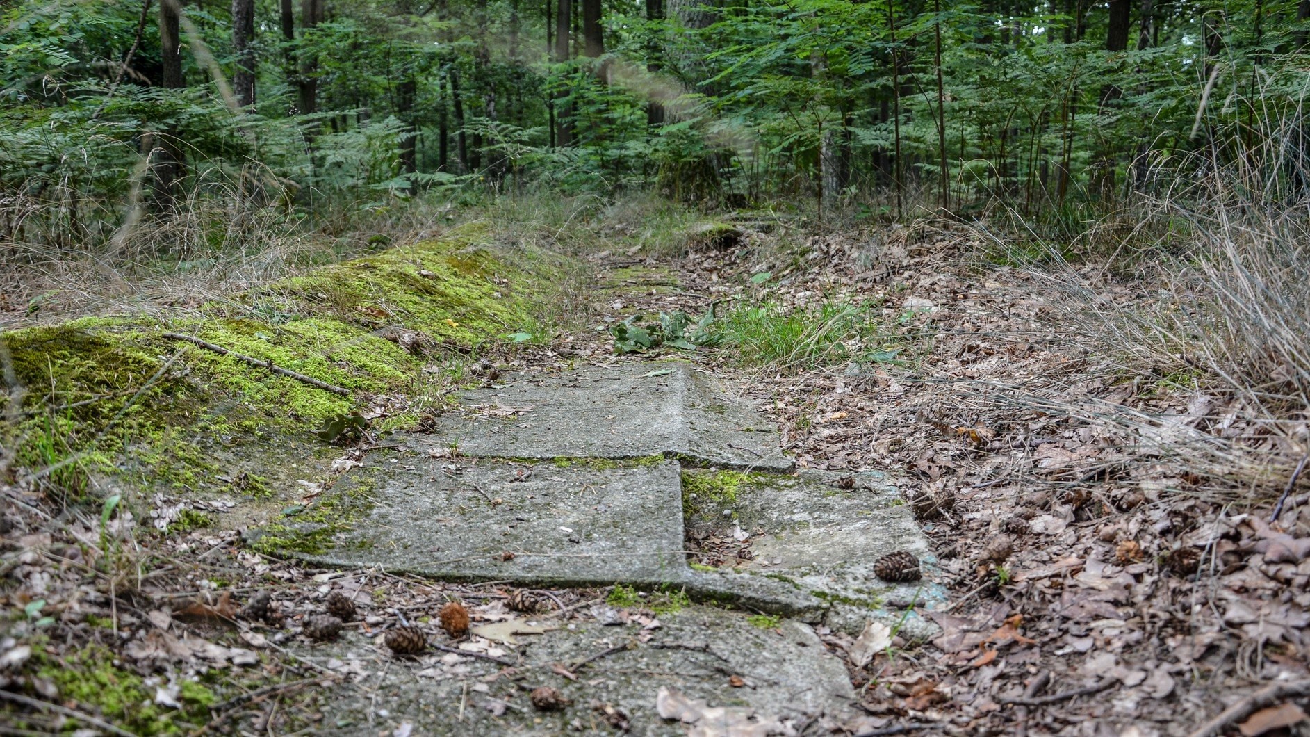 beton platten avus südkurve modell berlin charlottenburg lost places urbex abandoned berlin