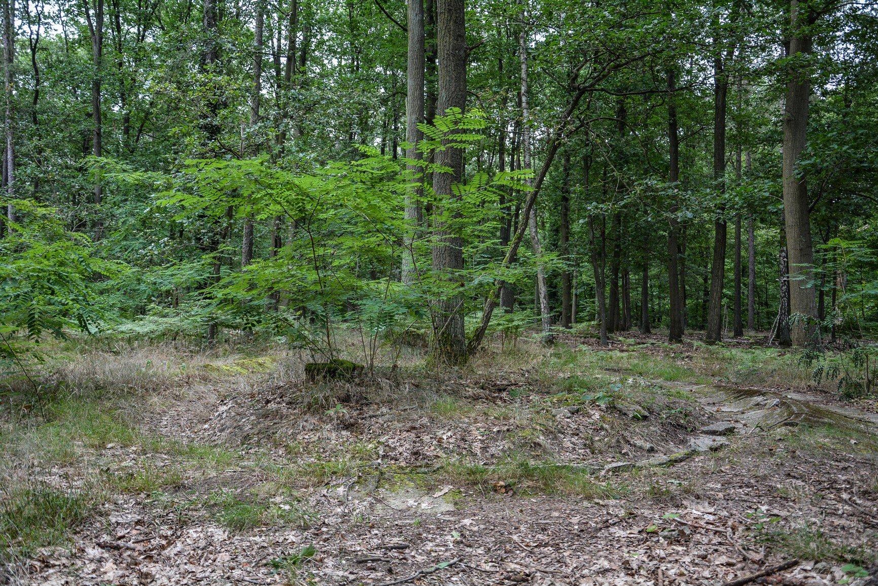 kurven ansicht avus südkurve modell berlin charlottenburg lost places urbex abandoned berlin