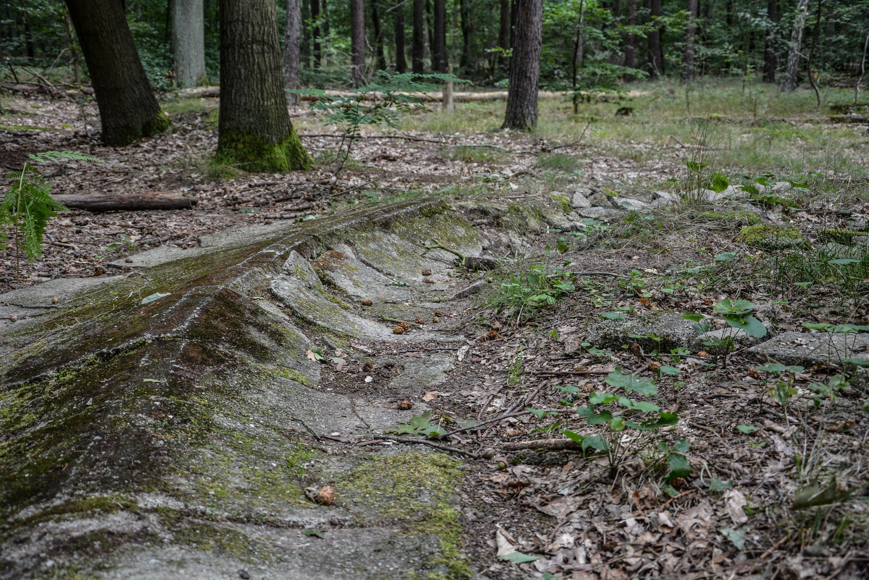 modell ruine kurve südkurve avus suedkurve modell berlin charlottenburg lost places urbex abandoned berlin