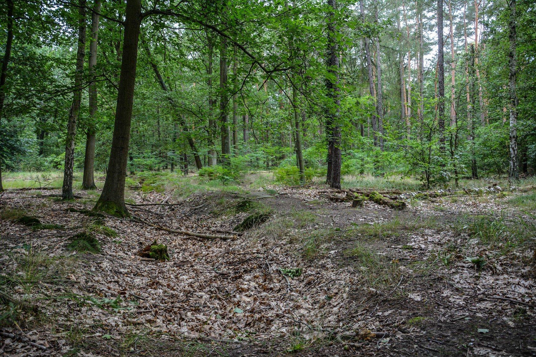wald avus südkruve modell berlin charlottenburg lost places urbex abandoned berlin